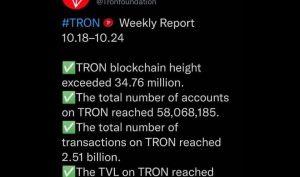 گزارش هفتگی TRON