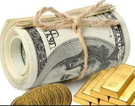 ورود ارز به کشور، امسال هم بدون محدویت  است/ طلا، نقره و پلاتین خام هم از مالیات بر ارزش افزوده معاف شدند