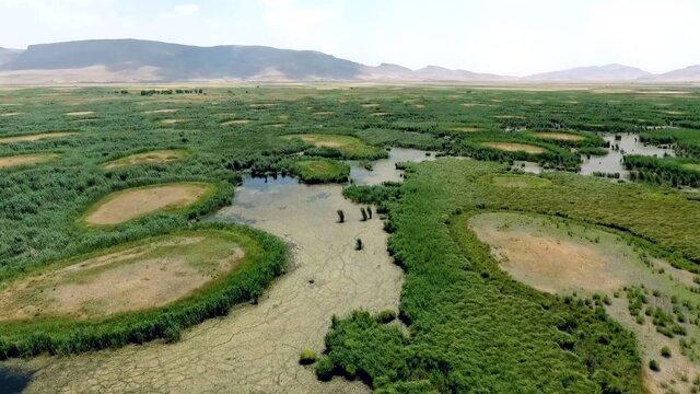 محیط زیست: تالاب هشیلان کرمانشاه تا ۲۰ روز آینده خشک میشود