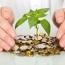 هفته ی سبز صندوق های سرمایه گذاری