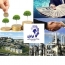 بلوک مدیریتی سرمایه گذاری ایرانیان بر روی میز فروش می رود
