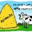 بینالود، مهمان جدید صنعت دامپروری