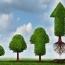 بازده بهاری صندوق های سرمایه گذاری