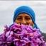 ۴ مزیت اصلی ورود زعفران به بورس کالا