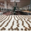 بازدید امروز کارشناسان و خبرنگاران از کارخانه ویتانا به روایت بورس ٢۴