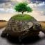 هفت تمرین برای شناسایی سود در بورس