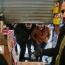 محتکران کلان اقلام بهداشتی، در برابر قاضی صلواتی
