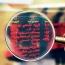 آمار عجیب از گردش پول در بورس