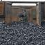 معرفی «زغال فروش» جذاب فرابورس