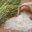 کارشناس بازار سرمایه مطرح کرد؛ ۳ کارکرد اصلی گواهی سپرده برنج برای کشاورزان
