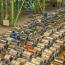 رئیس واحد گالوانیزه و ورق رنگی شرکت فولاد مبارکه مطرح کرد؛ نقش استراتژیک فولاد مبارکه در تأمین مواد اولیه صنعت لوازم خانگی